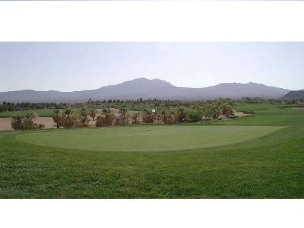Primm Valley Desert #7